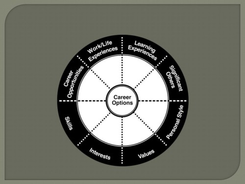 2. Career Wheel Picture