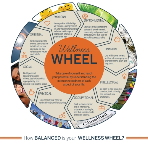 2019-wellness-wheel-how-balanced