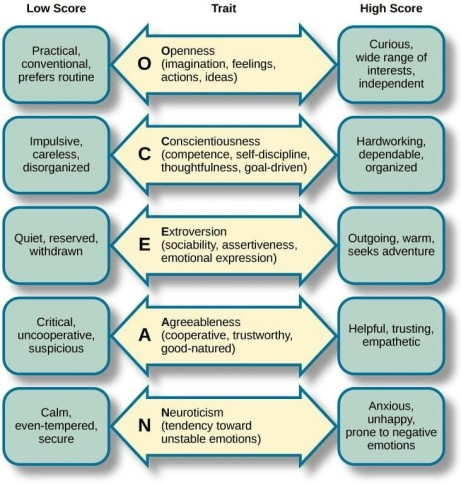 8. Five Factor Model of Personality