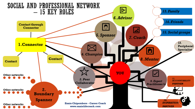 Social and Professional Network - 15 Key Roles Infographic