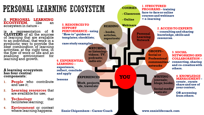 Personal Learning Ecosystem Infographic